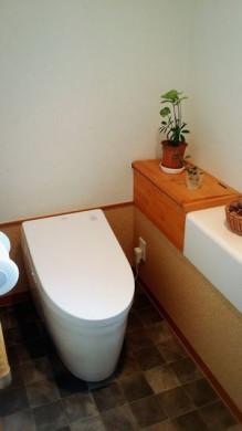 NEWトイレ~♪