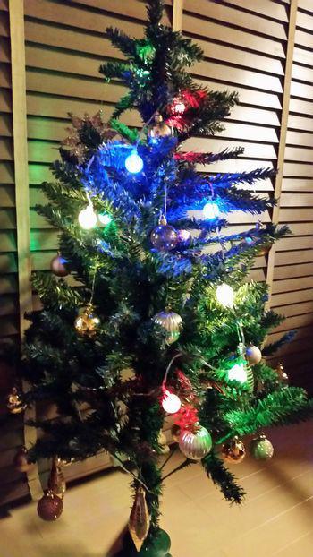 もうすぐクリスマスですね♪